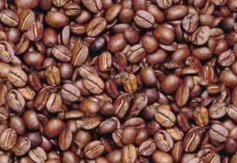 Los granos de café